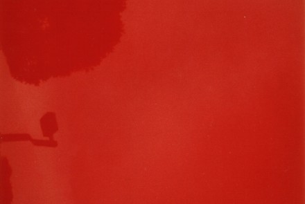 Roja, 2000 Fotografía 198 x 127 cm. Edición de 5 ejemplares